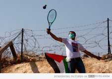 Playing tennis to return tear gas canisters to Israeli troops.